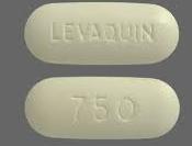 buy Levaquin