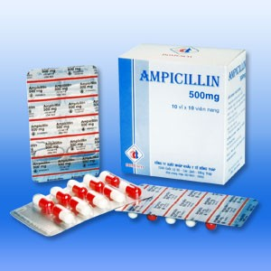Ampicillin antibiotic