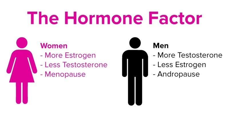 testosterone estrogen ratio